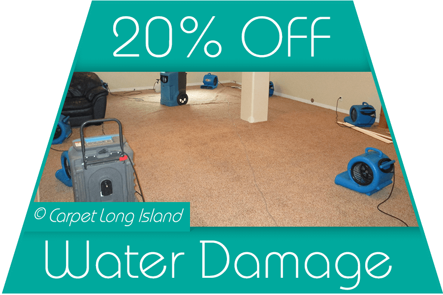 Water Damage Restoration Special